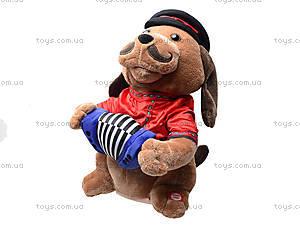 Музыкальная игрушка «Пёс с гармошкой», CL1609A, детские игрушки