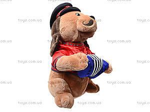 Музыкальная игрушка «Пёс с гармошкой», CL1609A, магазин игрушек