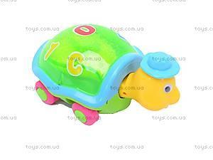 Музыкальная черепаха , 8806-1