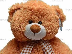 Музыкальная игрушка «Медведь в шарфике», S-JY-3660/30S, цена