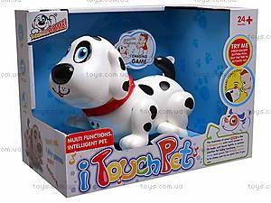 Музыкальная игрушка «Собачка», 11030, фото