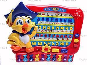 Музыкальная игрушка «Ученая сова», 1347E