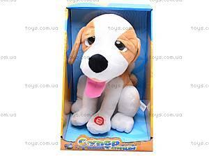 Музыкальная интерактивная собачка, CL1118-1