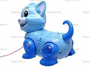 Игрушечная кошка на поводке, 2013-2, купить