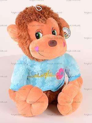 Музыкальная обезьянка, в цветной кофте, M-ZY432