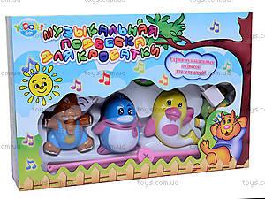 Музыкальная подвеска «Карусель», 999-17, игрушки