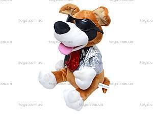 Музыкальная собачка-повторюха, CL1506B, фото
