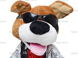 Музыкальная собачка-повторюха, CL1506B, детские игрушки