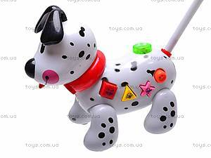 Музыкальная собака-каталка, 229C, отзывы