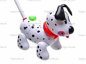 Музыкальная собака-каталка, 229C, игрушки