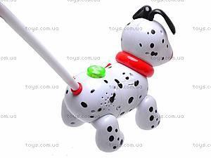 Музыкальная собака-каталка, 229C, детские игрушки