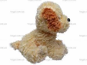 Музыкальная собака, сидячая, Q-271-036WT, купить
