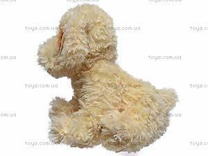 Музыкальная собака, сидячая, Q-271-036WT, цена