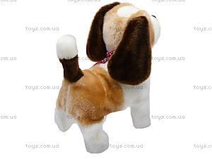 Музыкальная игрушка «Собачка» детская, 9603B2, купить