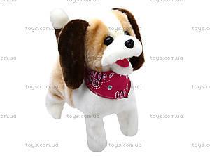 Музыкальная игрушка «Собачка» детская, 9603B2, фото
