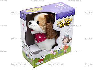 Музыкальная игрушка «Собачка» детская, 9603B2, отзывы