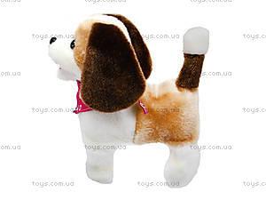 Музыкальная игрушка «Собачка» детская, 9603B2, цена