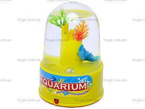 Музыкальный аквариум, 2810