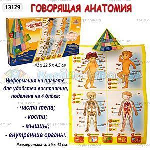 Музыкальный коврик «Анатомия», 13129