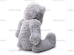 Музыкальный медведь «Тедди», S-S38-3367A/6, купить