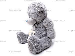 Музыкальный медведь «Тедди», S-S38-3367A/6, отзывы