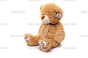 Музыкальный плюшевый медведь, с шарфом, S-JY-3660/50, купить