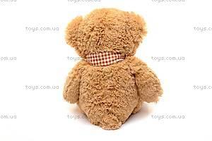 Музыкальный плюшевый медведь, с шарфом, S-JY-3660/50, фото