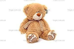 Музыкальный плюшевый медведь, с шарфом, S-JY-3660/50, отзывы