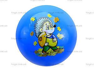 Игровой мяч с рисунком, BT-PB-0023, игрушки
