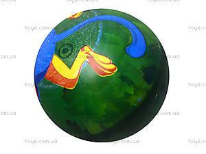 Мяч с рисунком, BT-PB-0011, купить