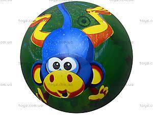 Мяч с рисунком, BT-PB-0011, отзывы