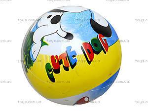 Мяч с рисунком, BT-PB-0011, цена