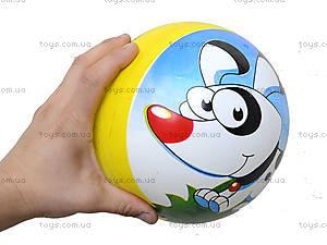Мяч с рисунком, BT-PB-0011, игрушки