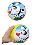 Мяч с рисунком, BT-PB-0011, фото