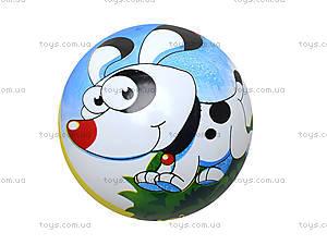 Мяч с рисунком, BT-PB-0011, магазин игрушек