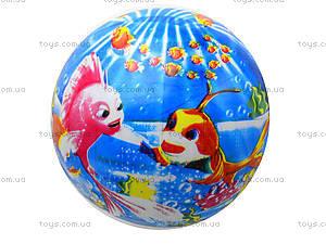 Детский мяч для игры с рисунком, BT-PB-0017, купить