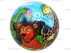 Мяч для детей с рисунком, BT-PB-0018, фото