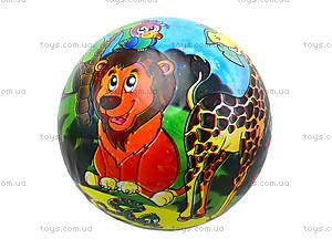 Мяч для детей с рисунком, BT-PB-0018, цена