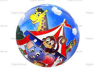 Мяч для детей с рисунком, BT-PB-0018, детские игрушки