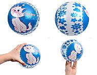 Игровой мячик с рисунком, YT934