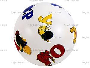 Мяч для детей, 19110531, фото