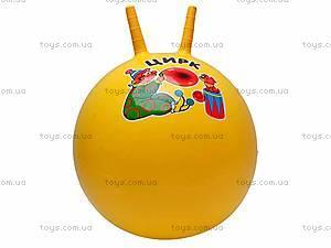 Мяч для фитнеса «Цирк», 5215
