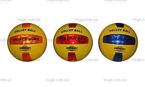 Мяч для игры в волейбол, W02-3425