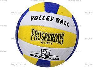 Мяч для волейбола Sport, BT-VB-0008, купить