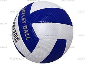Мяч для волейбола Sport, BT-VB-0008
