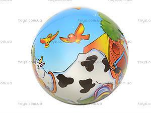Мяч фомовый, 6 штук, SL669, фото