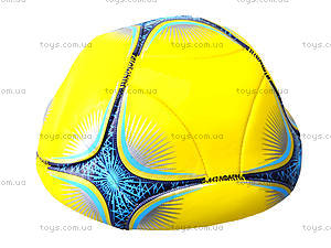 Футбольный мяч Predator, BT-FB-0084, цена