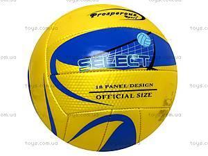 Мяч футбольный Select, BT-FB-0003