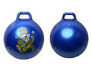 Фитнес мяч «Гиря», SPN24, отзывы