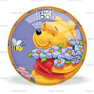 Мяч Disney «Милый Винни», 06/109-S-M